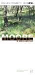 Flyer Moore in Rheinland-Pfalz